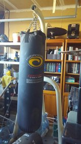 Large and small Gym Bag and stand in Fairfield, California