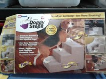 Doggy steps in Alamogordo, New Mexico