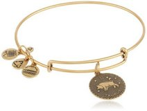 "Alex and Ani ""Bangle Bar"" Russian-Gold Taurus Bracelet in Ramstein, Germany"