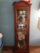 display cabinet in DeKalb, Illinois