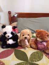 Stuffed animals in Alamogordo, New Mexico