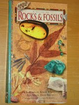 """a guide to rocks & fossils"" in Chicago, Illinois"
