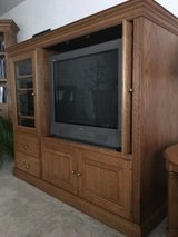 ENTERTAINMENT CENTER AND TELEVISION in Orland Park, Illinois
