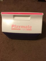 Igloo Playmate ice chest in Alamogordo, New Mexico