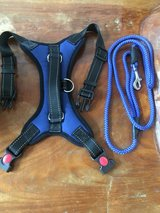 """Brand New"" Harness & Leash in Okinawa, Japan"