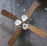 Hunter Ceiling Fan with Light in Alamogordo, New Mexico