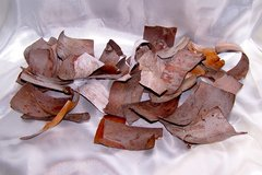Alligator Juniper Bark - Great for Fairy House Shingles, Potpourri, Natural Crafts in Alamogordo, New Mexico