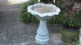 bird bath in Hinesville, Georgia