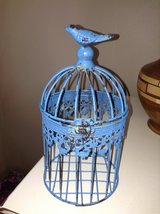 Blue Birdcage in Wheaton, Illinois