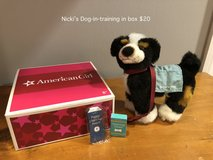 American Girl Nicki's Service Dog in Naperville, Illinois