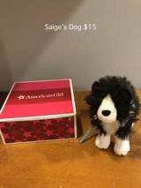 American Girl Saige's Pet Dog in Naperville, Illinois