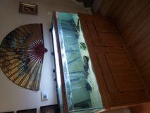 Selling 125gal fish tank in Shorewood, Illinois