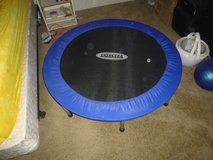 Exercise Trampoline in Alamogordo, New Mexico