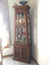 Charming Curio Cabinet in Orland Park, Illinois