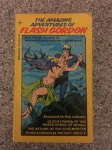 The Amazing Adventures of Flash Gordon in Okinawa, Japan