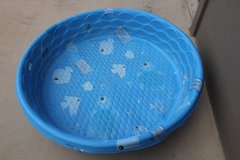 Water Dog or Kid Swimming Pools in Alamogordo, New Mexico