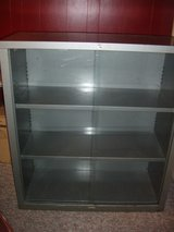 Metal and glass cabinet in Oswego, Illinois