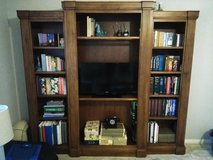Bookcase Entertainment Wall Unit in Conroe, Texas