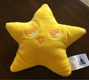 Plush Star in Oswego, Illinois