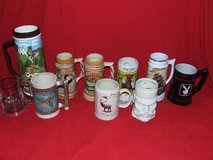 Stein Mug Collection Wyoming Tennessee Indian ++ Ceramic & Porcelain in Batavia, Illinois