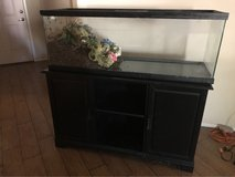 fish tank and stand in Las Vegas, Nevada