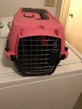 small pet carrier in Fort Bliss, Texas