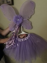 fairy wings and skirt in Wilmington, North Carolina