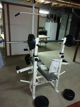 Weider 148 Weight Bench in Orland Park, Illinois