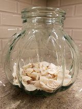 Large decorative glass container with sand & shells in St. Charles, Illinois