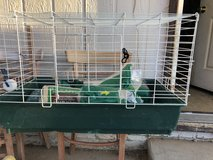 Cage guinie pig or bunny in Barstow, California