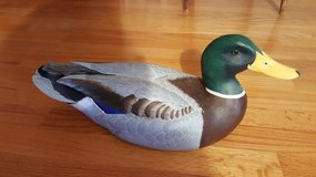 Duck Decoy in St. Charles, Illinois