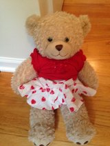 Build-a-Bear with heart outfit in Joliet, Illinois