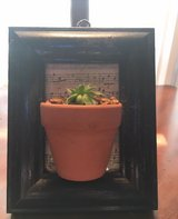 Little picture frame with potted succulent attached in Fort Benning, Georgia