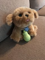 fur real friend puppy in Spring, Texas