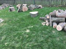 Free wood in Bolingbrook, Illinois