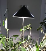 Plant Grow Light in Wiesbaden, GE