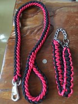 "XL Leash & Collar ""Brand New"" in Okinawa, Japan"