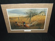 Pheasants Forever Print of The Year Memory Lane James Hautman Ltd Ed in Oswego, Illinois