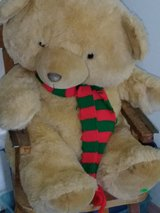 snuggle bear in Fort Leonard Wood, Missouri