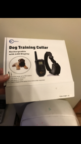 Dog collar in Fort Drum, New York