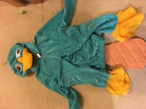 Perry the Platypus costume in Okinawa, Japan
