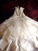 David's Bridal Beautiful unworn Wedding Gown - Size 4 in Plainfield, Illinois