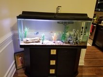 55-gallon fish tank in Beaufort, South Carolina