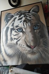 large white Tiger art canvas picture in Oswego, Illinois