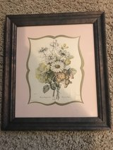 Vintage Botanical Print in Naperville, Illinois