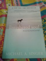 The Untethered Soul:The journey beyond yourself in Alamogordo, New Mexico