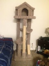 Amazing Cat Tree (Fully assembled) in Nellis AFB, Nevada