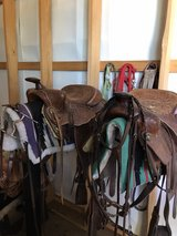 "two 16"" saddles and all of tack in Fort Leonard Wood, Missouri"