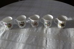 Set of five vintage Royal Grafton Bone China coffee cups- North American Birds series in Tacoma, Washington