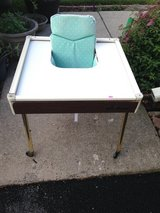 Babee Tenda High Chair with chair pad & Safety Bather in Joliet, Illinois